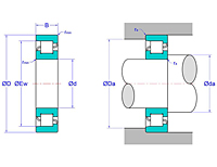 Cylindrical Roller Bearings - NF Design